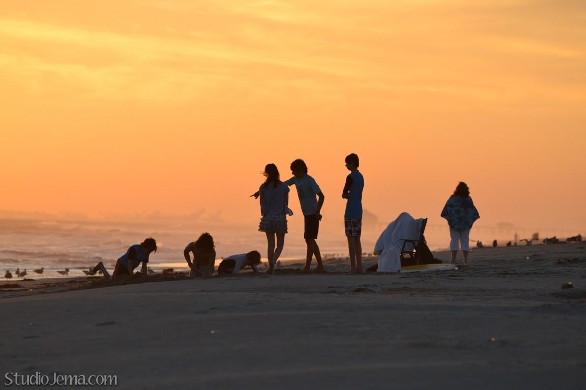 Huntington State Beach Dogs